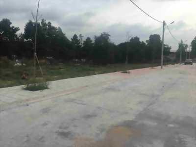 Đất biệt thự thành phố Hạ Long