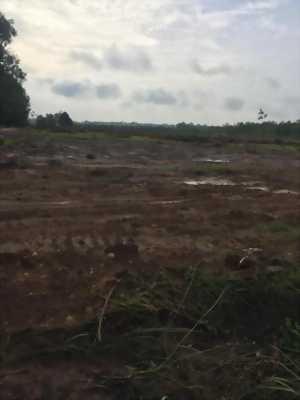 Đất nền giá rẻ nằm trong KCn Bàu Bàng