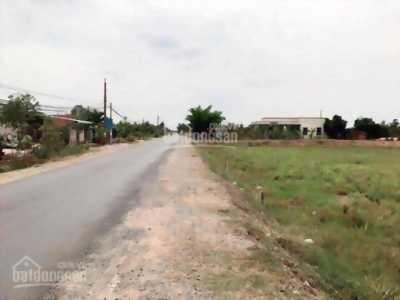 Cần bán gấp đất khu công nghiệp Phú An Thạnh