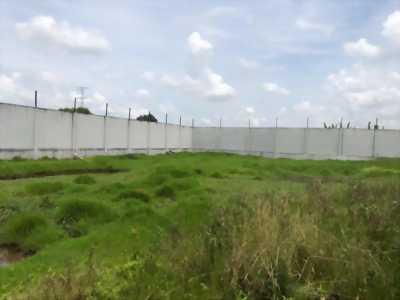 Mặt bằng trống cần cho thuê thuộc Nguyễn Hữu Trí, Mỹ Nhơn - Tân Bửu, Bến Lức, Long An