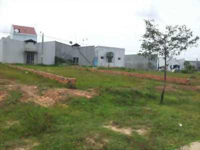 Đất nền giá rẻ nằm kề Đại lộ Trần Văn Giàu (Tỉnh Lộ 10), shr