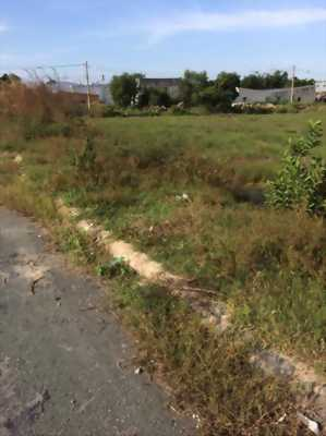 Bán đất nền thổ cư Bình Chánh 100%, đường Vĩnh Lộc