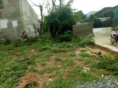 Thanh lý gấp đất nhà thổ cư Lại Hùng Cường, Bình Chánh