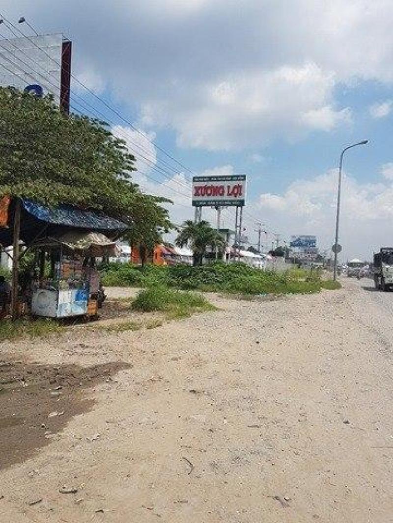 Cho thuê đất 1.962m2 vị trí trung tâm Bình Chánh