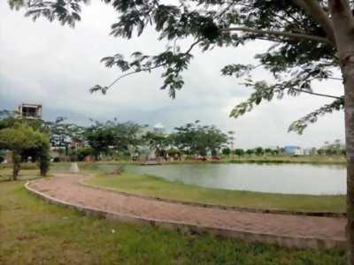 Cơ hội sở hữu đất nền giá rẻ tại Hồ Chí Minh