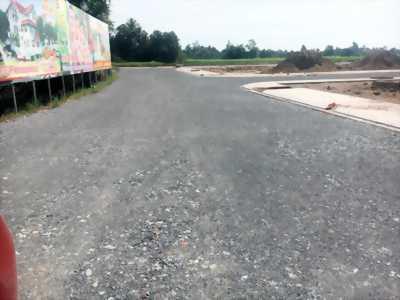 Đất mặt tiền quốc lộ 50, giá 5tr/m2