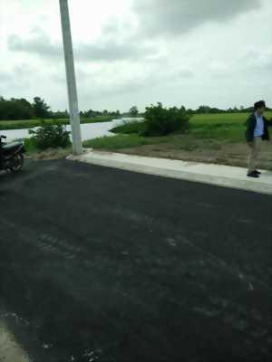Ngân hàng phát mãi vài lô đất ở Huyện Bình Chánh