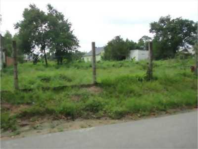 Cần sang nhượng gấp lô đất vườn diện tích 1910m2, trên đường Liên Áp 1-2 xã _ Bình Chánh.