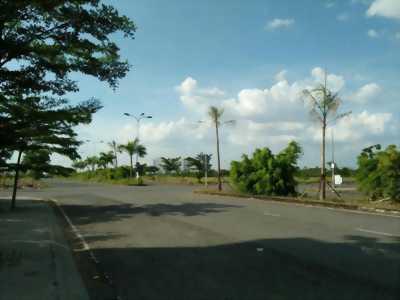 án đất tại Đường Trần Đại Nghĩa, Xã Tân Kiên, Bình Chánh, Tp.HCM
