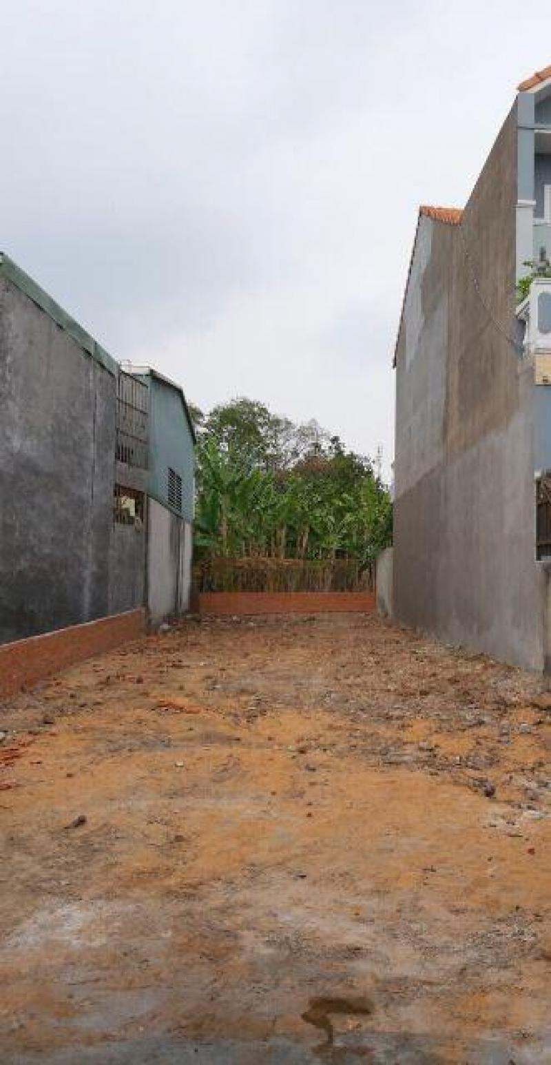 Bán gấp 200tr/m2 MT Láng Le Bàu Cò, Xã Lê Minh Xuân, Bình Chánh, HCM.