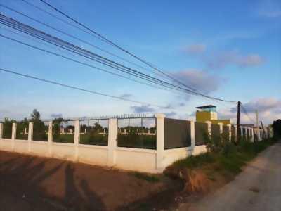 Cần bán gấp lô đất 3890m2 gần khu công nghiệp cầu tràm sổ hồng riêng.