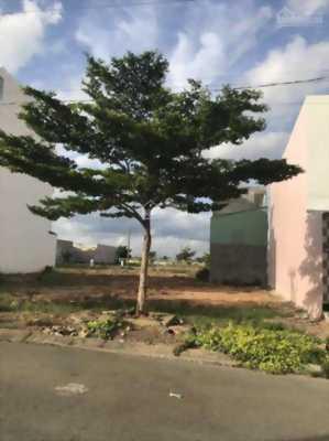 Cần bán gấp 250m2 đất thổ cư, ngay mặt tiền Đại lộ Trần Văn Giàu, Bình Chánh