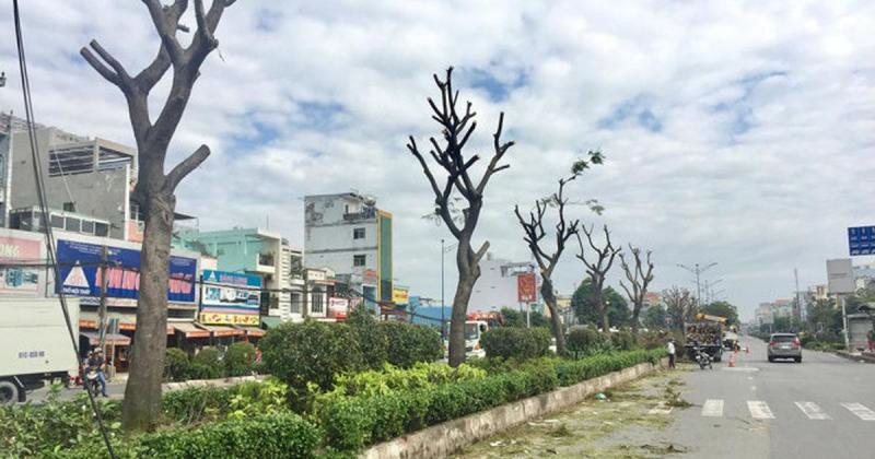 Chính chủ Bán đất Ấp 6 xã Bàu Cạn huyện Long Thành