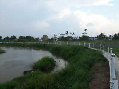 Thanh lý đất nền sát chợ Rạch Kiến Long An
