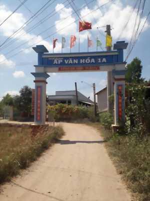 Bán đất nền chính chủ, 2 mặt tiền, khu dân cư ấp 1A ,xã Tân Trạch, huyện Cần Đước ,tỉnh Long An