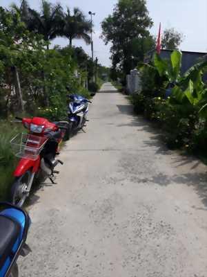 Bán đất lúa đường xe hơi chạy tới đất ở xã Phước Đông, huyện Cần Đước, tỉnh Long An.  .
