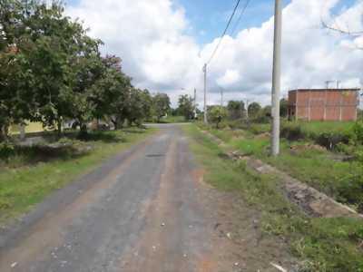 Bán gấp lô đất nền đường xe hơi ở khu tái định cư Phước Đông, xã Phước Đông, huyện Cần Đước, tỉnh Long An.