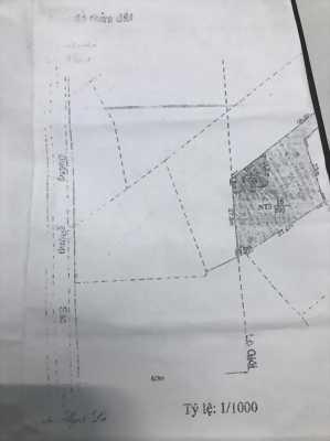 Cần bán đất mặt tiền ở xã Bình Khánh, huyện Cần Giờ