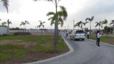 Bán đất thổ cư Cần Giuộc, đường 835, xã Mỹ Lộc