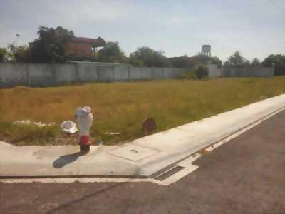 Đất sổ hồng 100m2 (20x5) Nguyễn Hữu Thọ, Mỹ Lộc