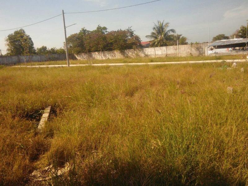 Đất đường 835A giá chỉ 590tr không hề kê lên SHR.