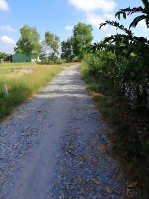 Bán 500m2 đất vườn ấp Lộc Trung, xã Mỹ Lộc, Cần Giuộc, Long An. Giá 890 triệu