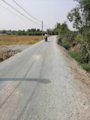 Bán 3000m2, đất lúa đường xe tải gần thị trấn Cần Giuôc, xã Trường Bình, Cần Giuộc, Long An