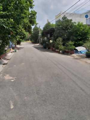 Bán đất nền Khu tái định cư Tân Phước Ấp Tân Phước, xã Tân Kim, huyện Cần Giuộc, tỉnh Long An