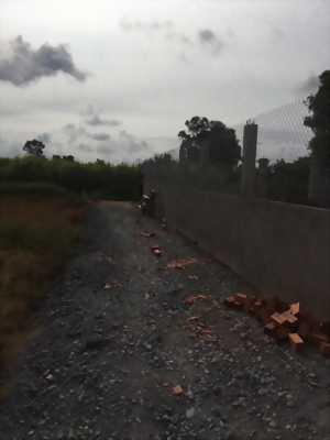 Bán lô đất vườn ấp Lộc Trung ,xã Mỹ Lộc, huyện Cần Giuộc ,tỉnh Long An