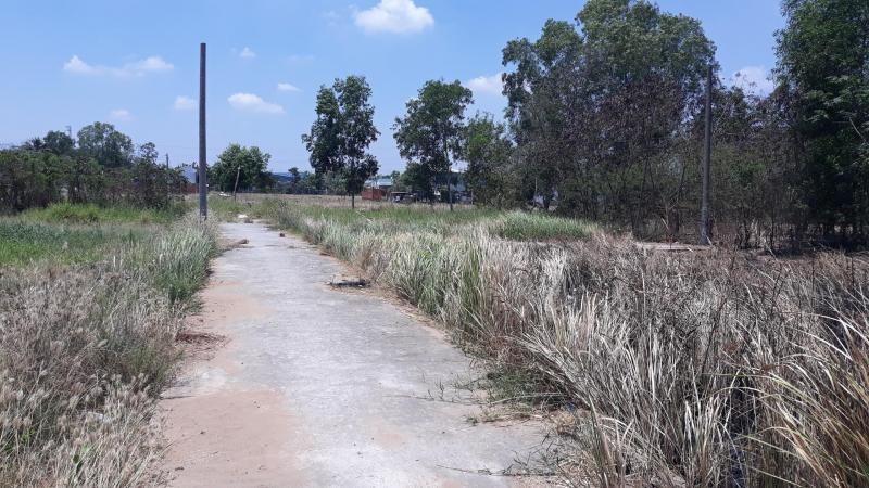 Bán lô đất nền 2 mặt tiền trước sau, sổ hồng riêng ấp Thanh Ba ,xã Mỹ Lộc ,huyện Cần Giuộc, Long An