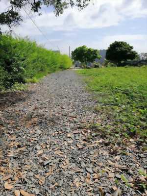 Bán đất vườn góc 2 mặt tiền hẻm ấp Lộc Hậu, xã Mỹ Lộc, Cần Giuộc, Long An.