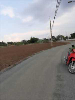 Bán 4564m2 đất mặt tiền đường Cộng Đồng Lộc Trung, Mỹ Lộc, Cần Giuộc, Long An