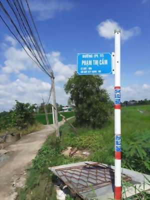 Bán 2500m2 đất lúa, sổ hồng riêng thuộc ấp Phước Hưng, xã Phước Lâm, huyện Cần Giuộc, tỉnh Long An