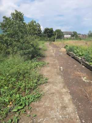 Bán đất thổ cư, hẻm ba gác đường ấp Lộc Trung, xã Mỹ Lộc, Cần Giuộc, Long An.