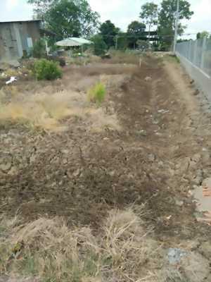 Bán đất mặt tiền đường xe tải Lê Thị Lục, ấp Phước Kế, xã Phước Lâm, Cần Giuộc, Long An