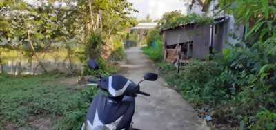 Bán đất thổ cư, sổ hồng riêng thuộc ấp Trong, xã Phước Hậu, huyện Cần Giuộc, tỉnh Long An