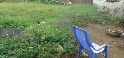 Bán gấp đất thổ cư, hẻm xe hơi đường ấp Lộc Tiền, xã Mỹ Lộc, huyện Cần Giuộc, tỉnh Long An