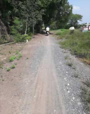 Bán 500m2 đất vườn đường xe 4 chỗ cách đường lớn 50m xã Phước Hậu, huyện Cần Giuộc, Long An