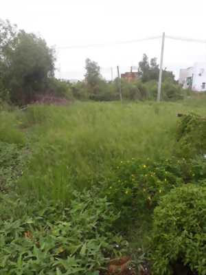 Bán đất thổ cư hẻm xe hơi xã Tân Kim, huyện Cần Giuộc, xã Long An