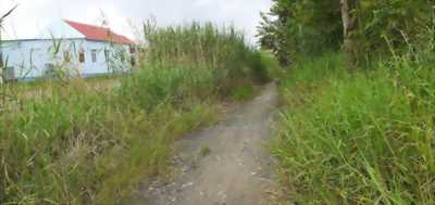 Cần bán đất thổ cư góc hai mặt tiền đường xe tải thuộc xã Mỹ Lộc, huyện Cần Giuộc, Long An