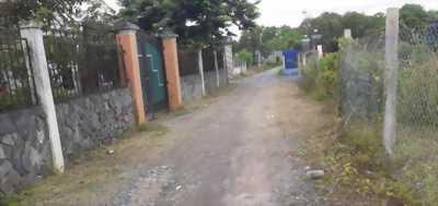 Bán đất thổ cư 3 mặt tiền hẻm xe tải đường Lưu Văn Ca, Phước Lý, Cần Giuộc, Long An