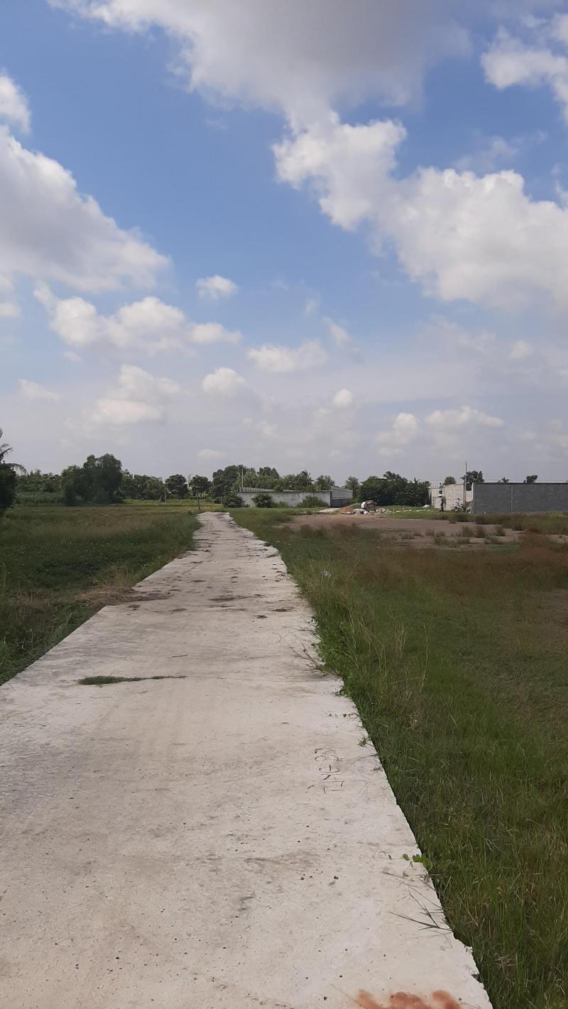 Cần bán 500m2 đất vườn đường xe tải xã Thuận Thành, Cần Giuộc, Long An