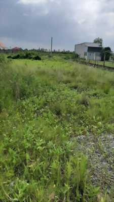 Bán đất mặt tiền đường Cộng Đồng Lộc Trung, Mỹ Lộc, Cần Giuộc, Long An khu vực sấp sát nhập thị trấn
