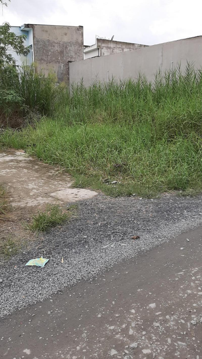 Bán đất hẻm xe hơi đường Tân Phước, xã Tân Kim, Cần Giuộc, Long An, gần bến phà Long Hậu