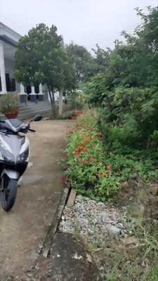 Bán đất hẻm xe hơi đường Tây Bắc, xã Thuận Thành, huyện Cần Giuộc, Long An.