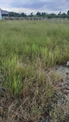 Bán đất mặt tiền đường Mỹ Lôc - Phước Hậu, xã Mỹ Lộc, Cần Giuộc, Long An
