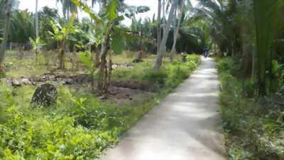 Đất nền sổ hồng riêng, xã Sơn Hòa, huyện Châu Thành, tỉnh Bến Tre, 175 triệu/165m2