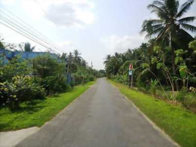 Bán đất gần công an huyện Châu Thành, giá 275 triệu, Châu Thành, Bến Tre