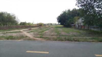 Đất nền đẹp nằm ngay mặt tiền đường nhựa  12m thuộc đường nhánh Phạm Văn Cội