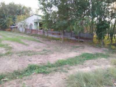 Bán đất thổ vườn mặt tiền đường nhựa 8m, cách đường Cây Trôm Mỹ Khánh 200m ,1000 m2.